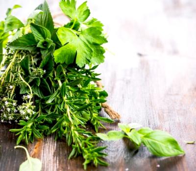 Ароматические растения и их польза для здоровья
