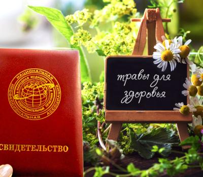 Лекарственные растения в сохранении здоровья с документом НАНМ